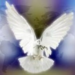 A Life Lived in the Spirit