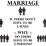 Marriage: 2 Sexes? 2 Persons?