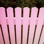 Pink Picket Fences