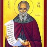 St. Sabas, Abbot