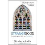 Strange Gods: Unmasking the Idols in Everyday Life