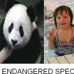 Save the Pandas and Down Syndrome