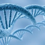 US Supreme Court Rejects Gene Patents