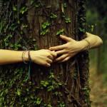 Book Review: Eco-Tyranny